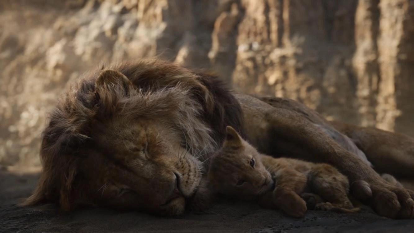 Morte mufasa il re leone 2019