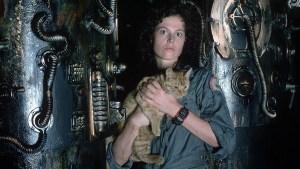 astronauta gatto alien film