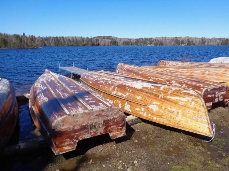 Sanded cedar strips by Wabatongushi Lake