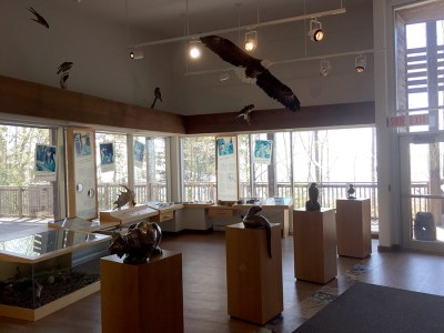 Agawa Bay Visitor Center Exhibits