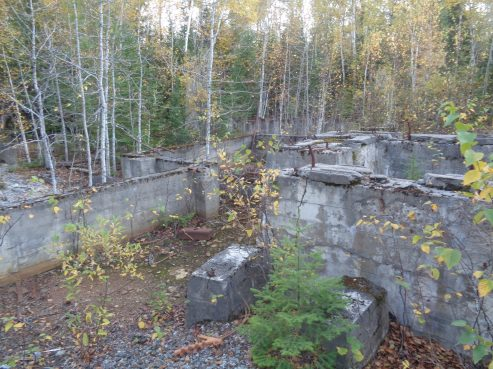 Cline Mine Remnants #1