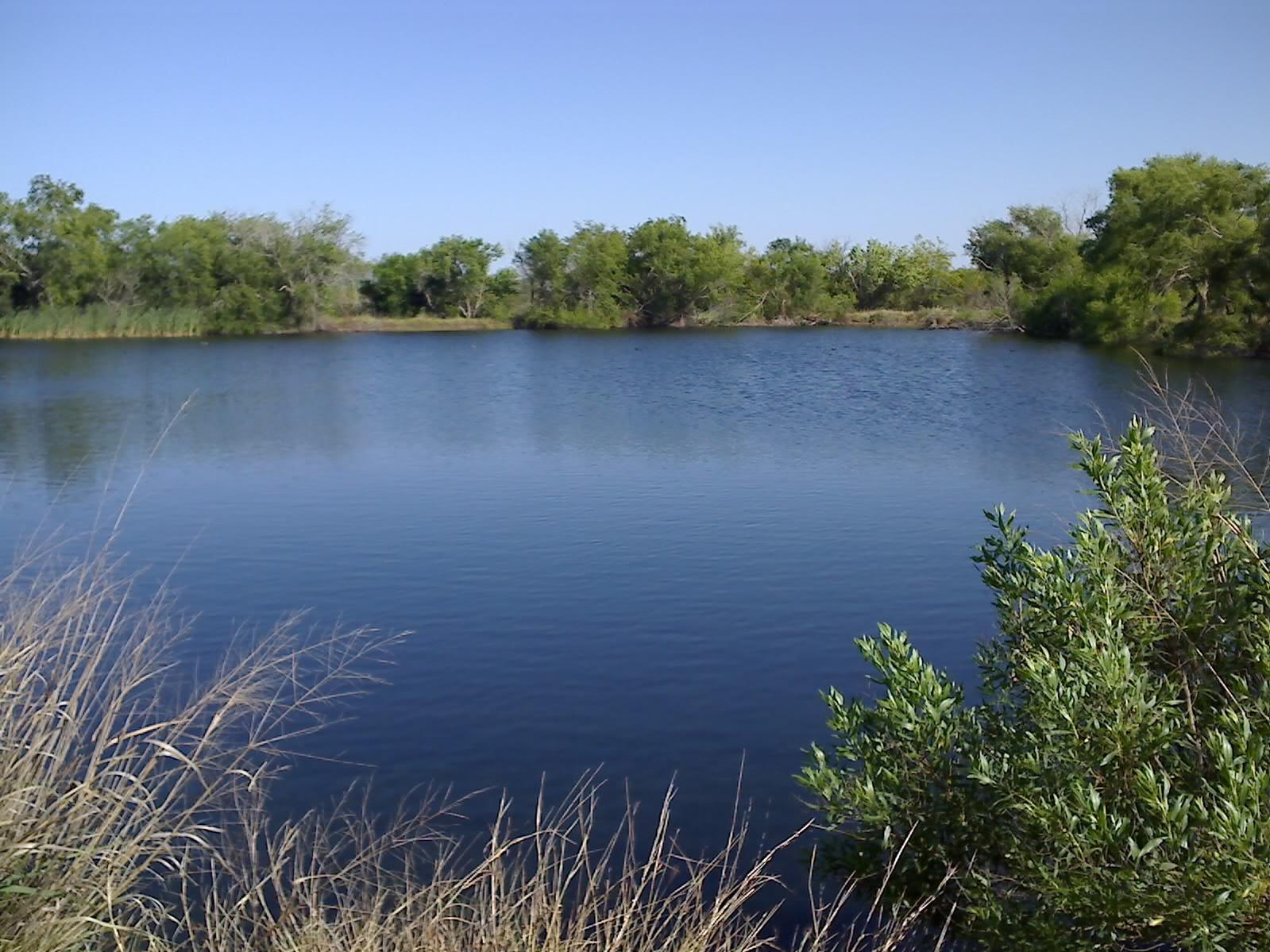 How Deep Should Farm Pond Be