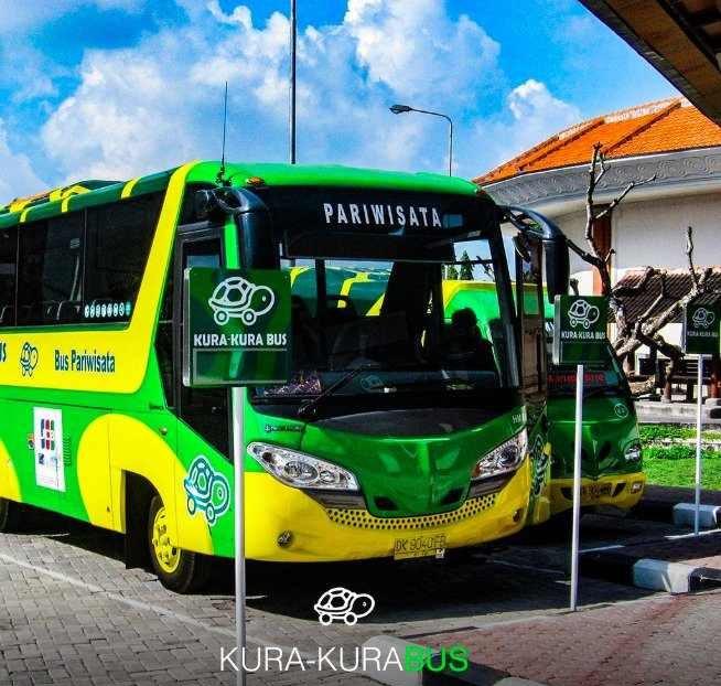 峇里島交通 - Kura-Kura巴士