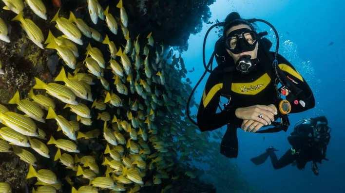 峇里島水上活動 - 水肺潛水