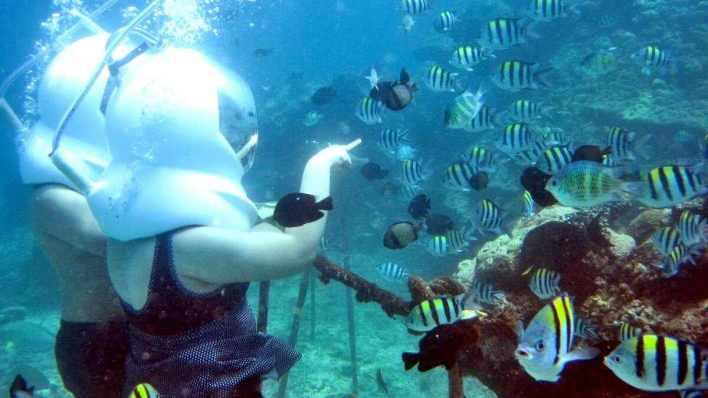 藍夢島攻略 - 海底漫步