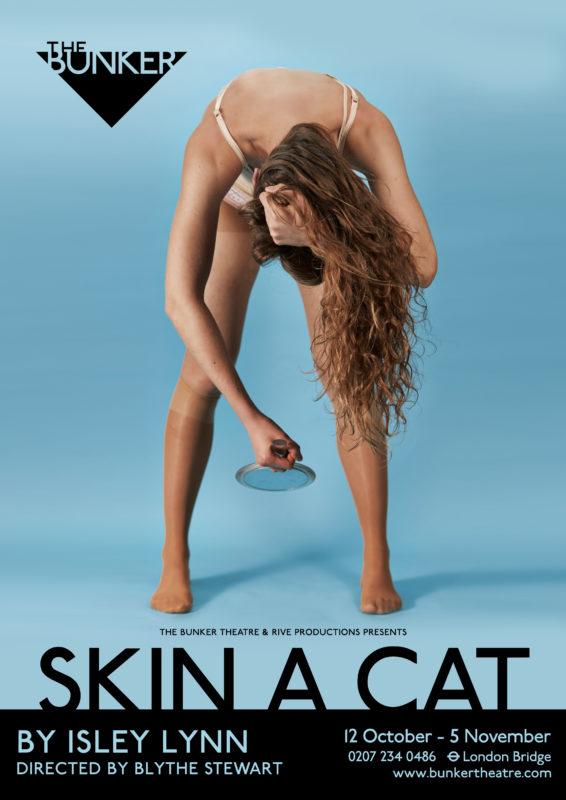 1_SKIN_A_CAT_POSTER