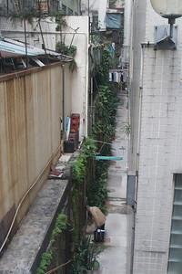 A narrow backalley
