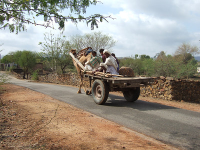 On our way from Sariska to Bhangarh