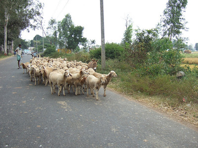 Highway 7 near Blore