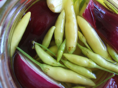 Pickled hot chilli pepper