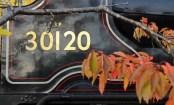 Watercress Line Alresford 20 October 2015 Ex-LSWR T9 30120 on low loader