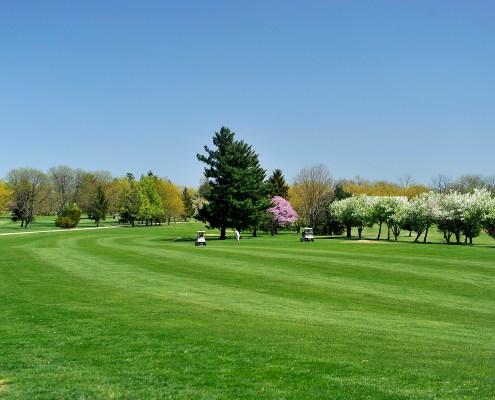 golfers in fairway