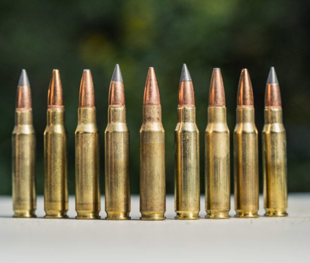 The Best Bullet For Deer Hunting