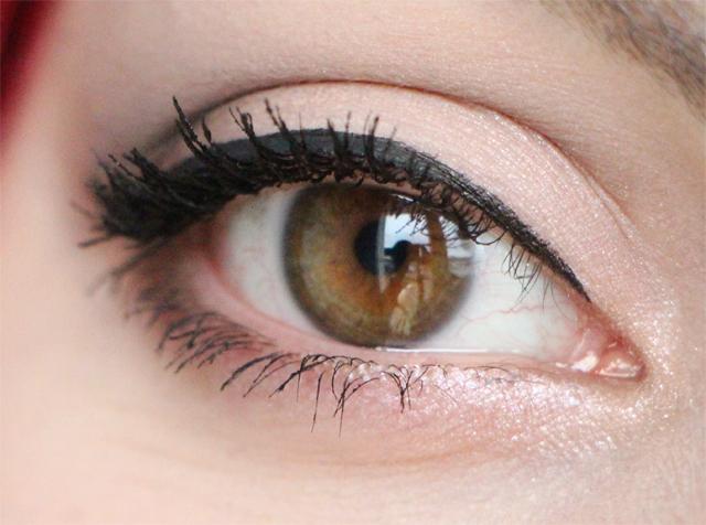 bobbi eye zoo