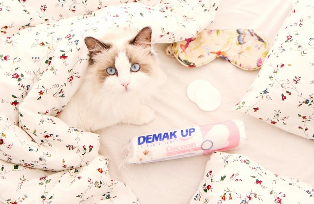 demak-up-objectif-cocoon-1