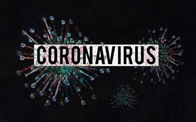 Coronavirus ed ecommerce: impennata delle vendite online