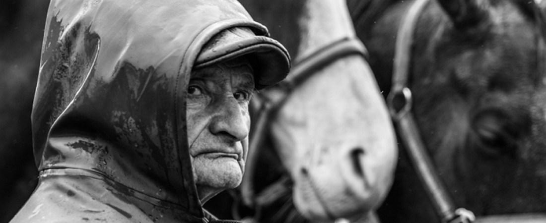 L'Oeil de Paco - Photographies de Jean-François Le Bescond - Actualités - Foire aux poulains de Plaintel