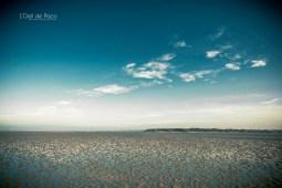 Photographe - Immersion - Au milieu de la Baie de Saint-Brieuc