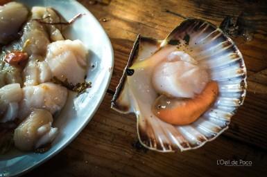 L'OeildePaco-Septentrionaux-Cuisine-Bonus (3)