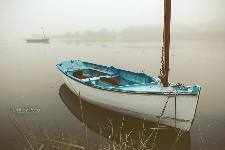 Photo #183 – Dans la brume d'un matin de juin