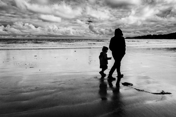 Photo #277 - Sur les traces de son ombre