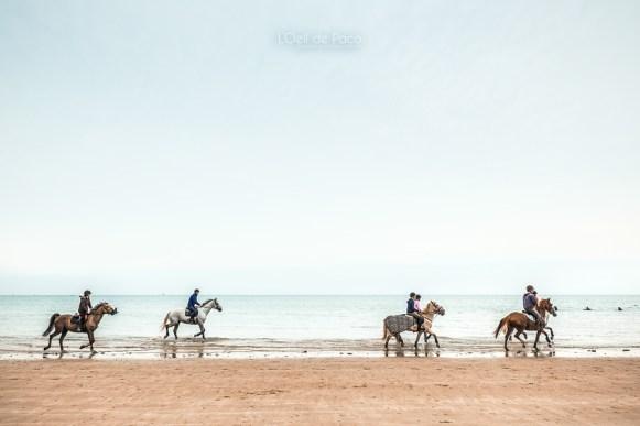 Photo #265 – La cavalerie des Rosaires