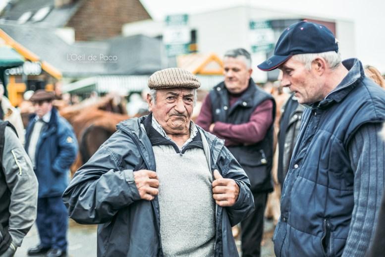L'Oeil de Paco - Foire aux Poulains - Plaintel - 2015 (28)