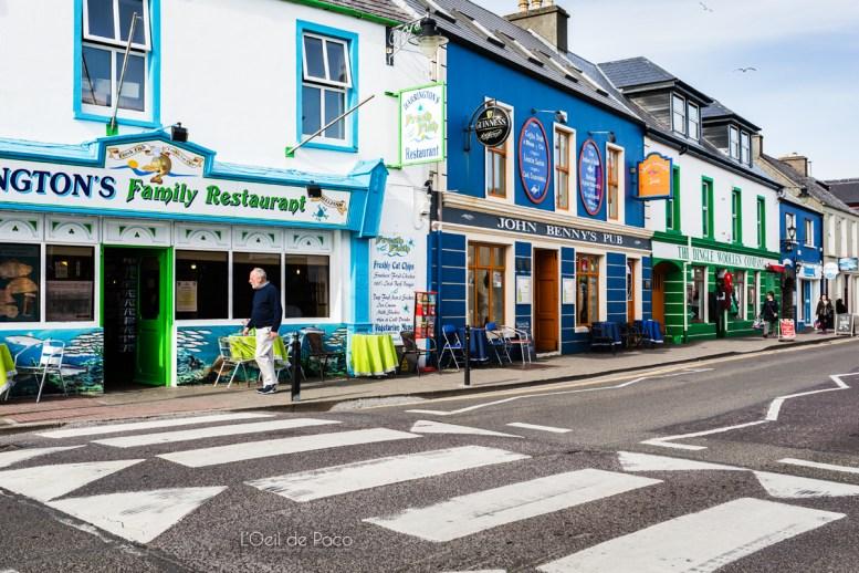 L'Oeil de Paco - Peninsule de Dingle - Irlande (138)