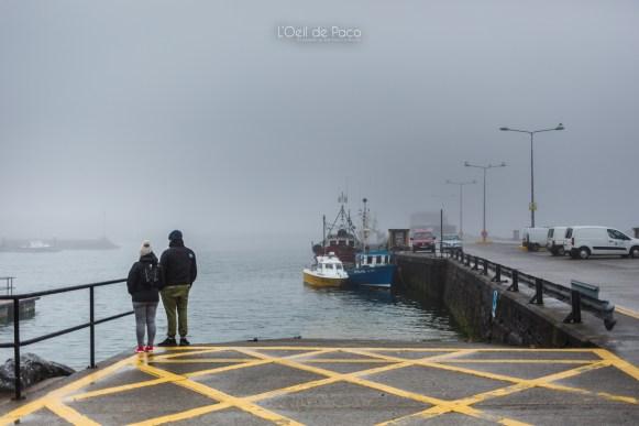 L'Oeil de Paco - Peninsule de Dingle - Irlande (38)