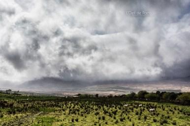 L'Oeil de Paco - Peninsule de Dingle - Irlande (54)