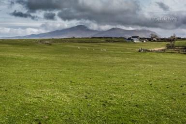 L'Oeil de Paco - Peninsule de Dingle - Irlande (57)
