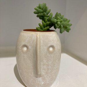 cache pot visage blanc oeili vegetal lyon