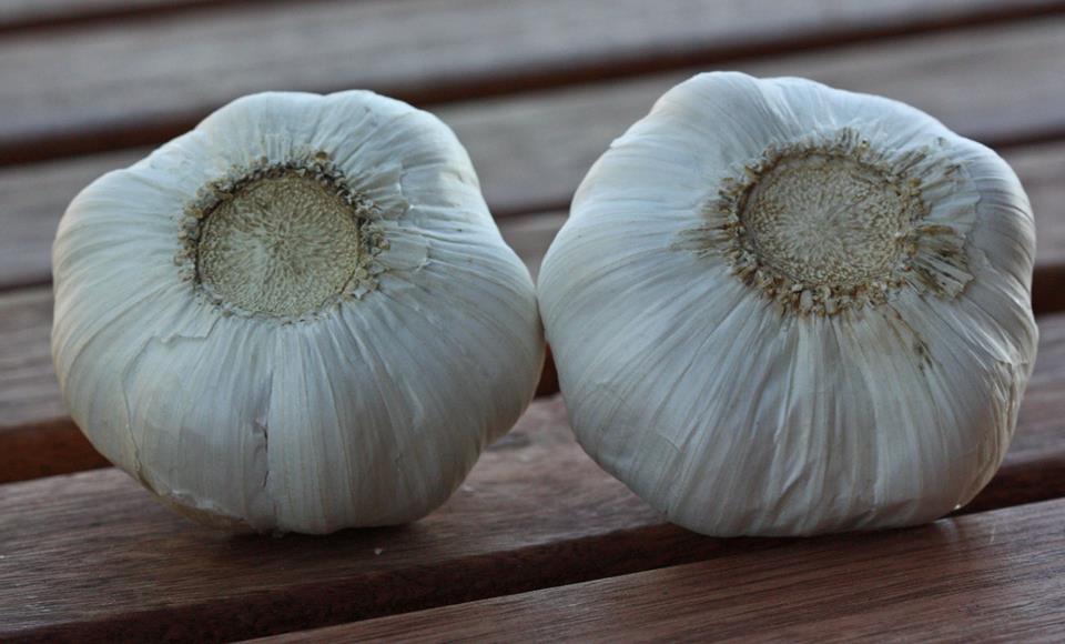 garlic-from-china1