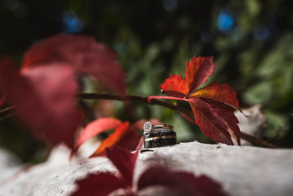 summerhill-kelowna-wedding-photography_ls8658