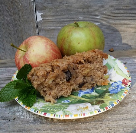 Old Timey Apple Cake