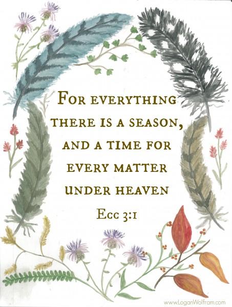 Ecclesiastes 3:1 from LoganWolfram.com
