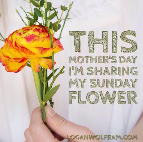 sharing my flower