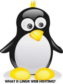 What is Linux Web Hosting?, Linux Web Hosting