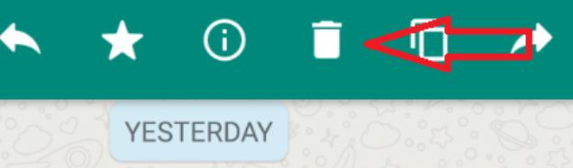 WhatsApp Message | logintips.net