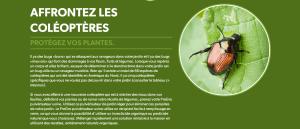 Protection des coléoptères