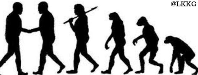 evolutionary explanation of behavior