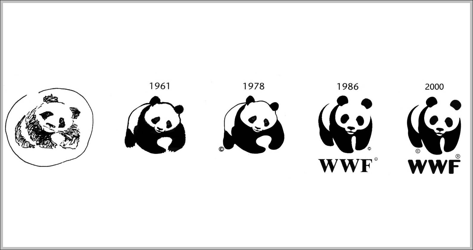 Wwf Trademark Archives