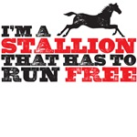 I'm a stallion - Leonard t shirt - Big Bang THeory