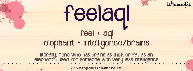 The etymology of the word Feelaql