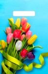 Купить оптом полиэтиленовый пакет Тюльпаны на голубом с вырубной (прорубной) ручкой от Тико