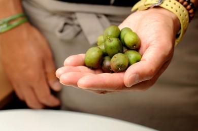 「ベビーキウイ」皮まで食べられるちいさなフルーツ。