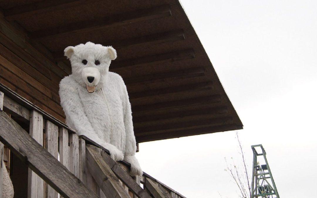 Videobotschaft: Was der Eisbär in Lohberg macht
