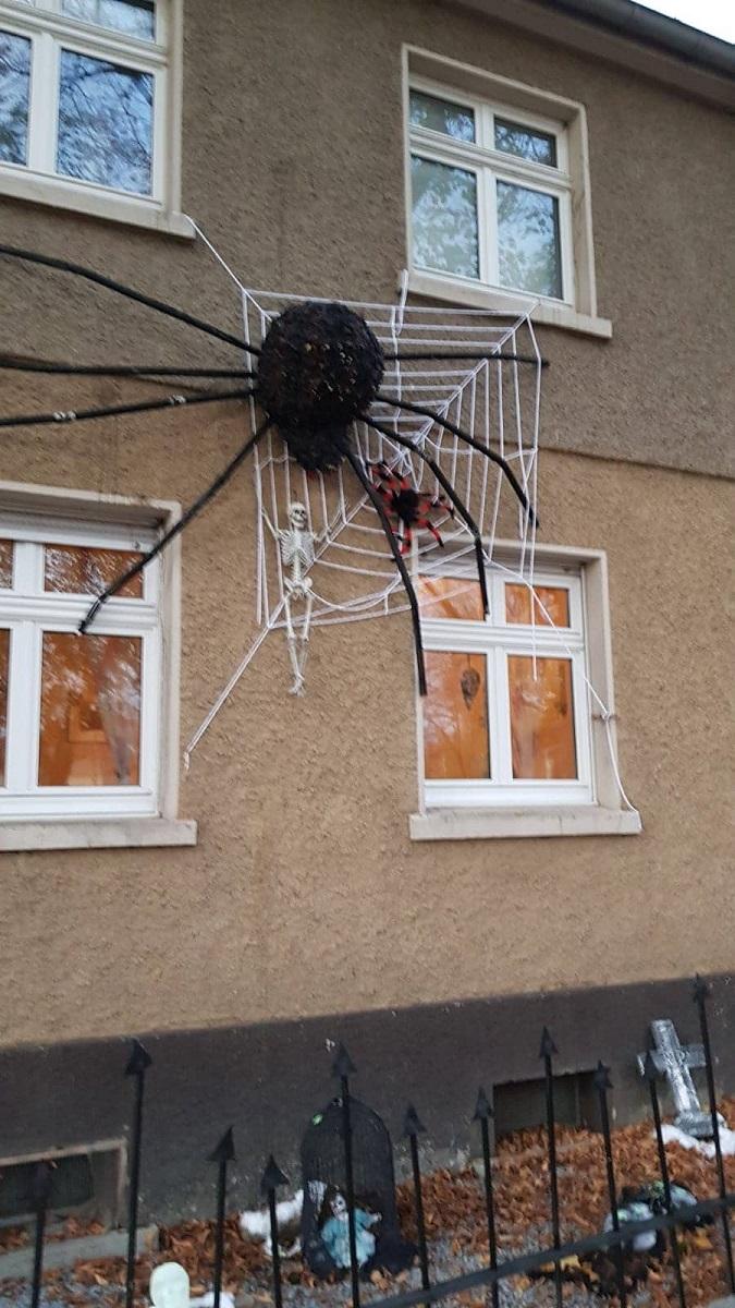halloween lohbergstraße spinne
