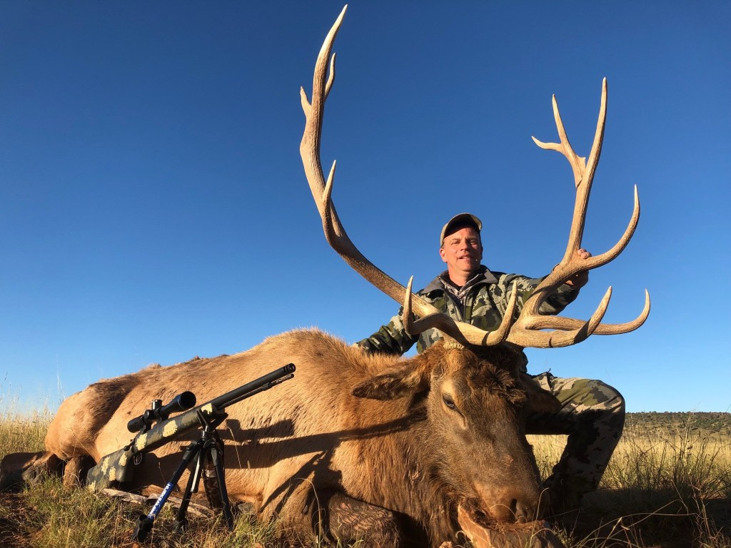 Elk Hunting Image