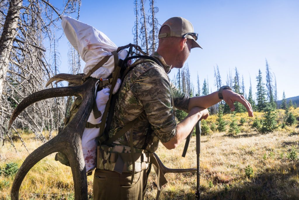 Elk Hunting Outfitter